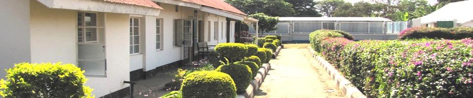 Arusha Mental Health Trust